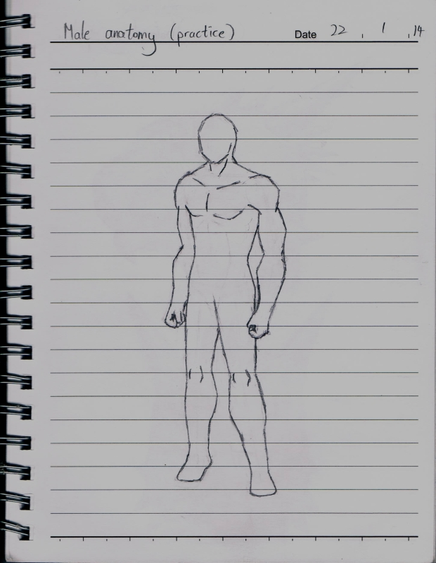 Outstanding Male Anatomy Drawing Practice Gallery - Anatomy And ...