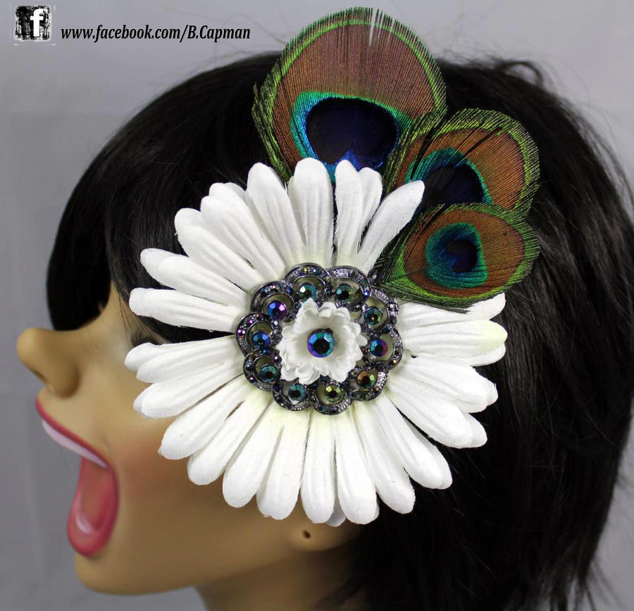 Peacock feathers and a big ole daisy by for Where can i buy peacock feathers craft store