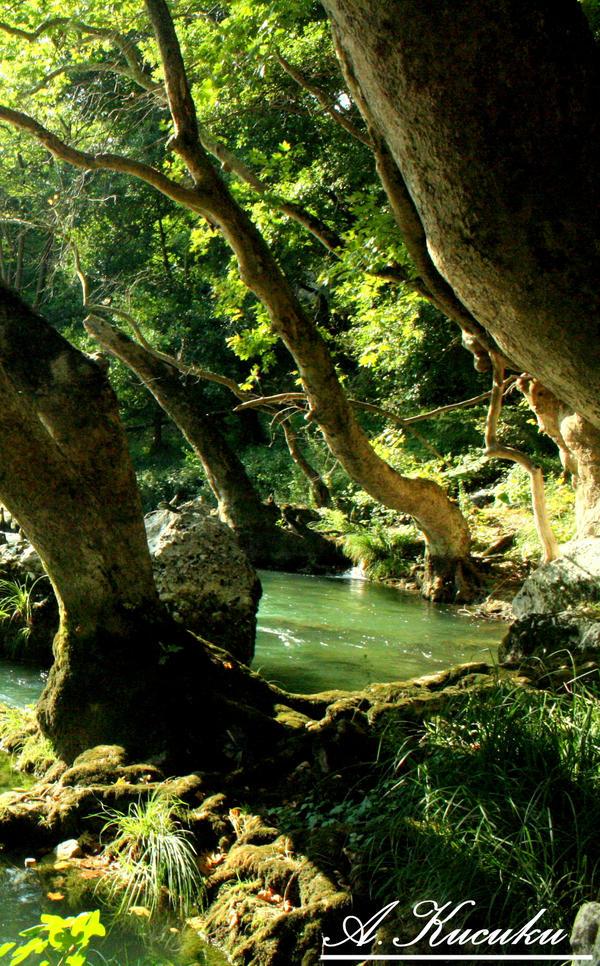 wanderland by Merlin86
