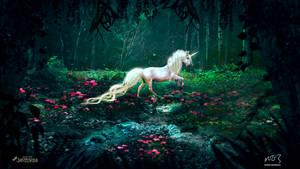 White Horse ( Collaboration With mumu0909 )