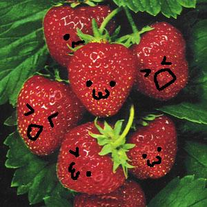 Cute Strawberries by ~coolspoonies on deviantART