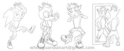 Sonic into Crash Bandicoot TF by whiteguardian