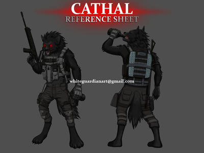 Cathal Ref Sheet