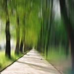 01 Green Corridor
