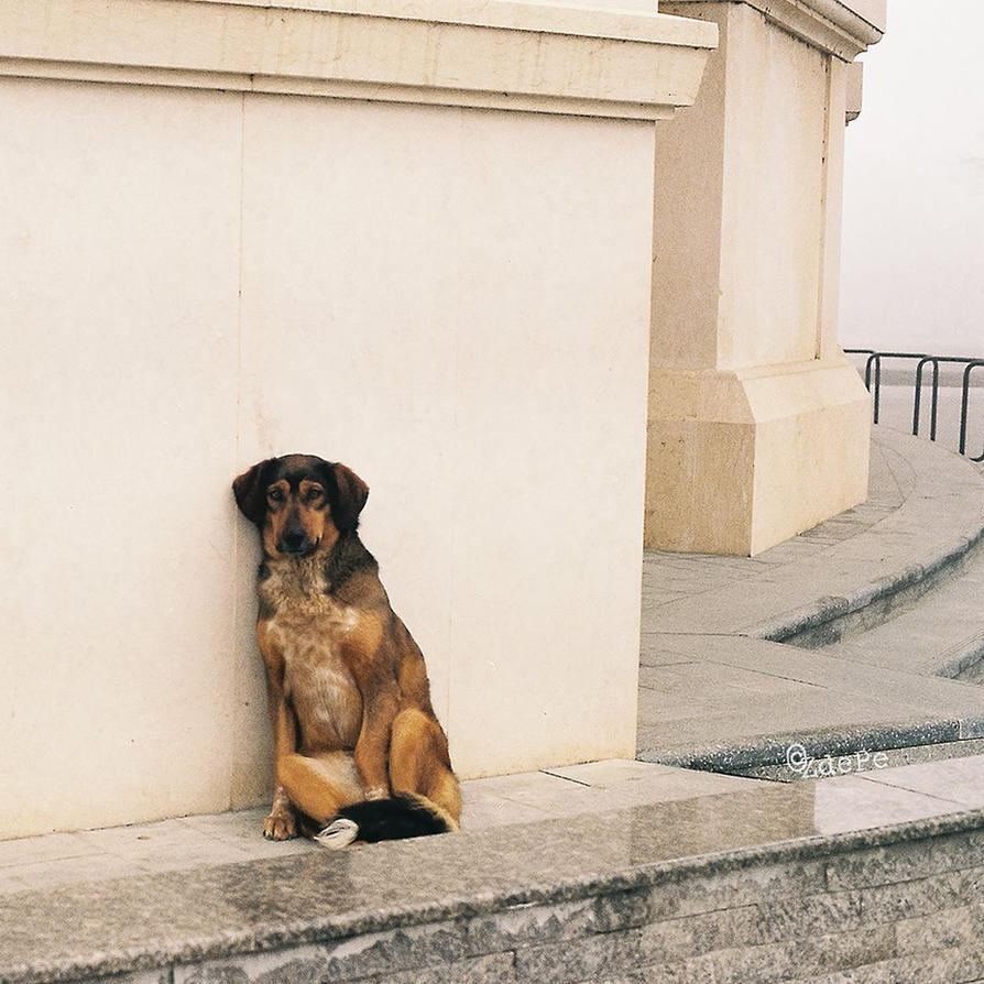 The beggar by BobRock99