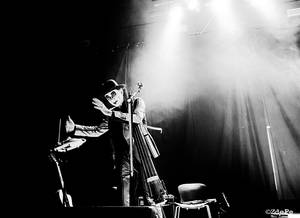 The Tiger Lillies 2