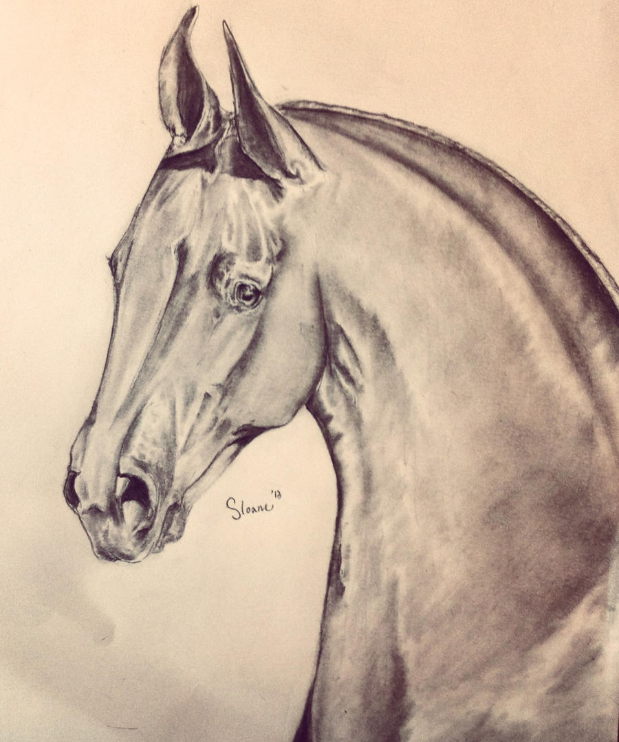 Saddlebred by S1oane