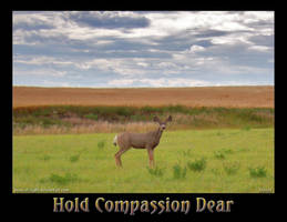 Hold Compassion Dear by ShyloLove
