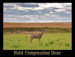 Hold Compassion Dear
