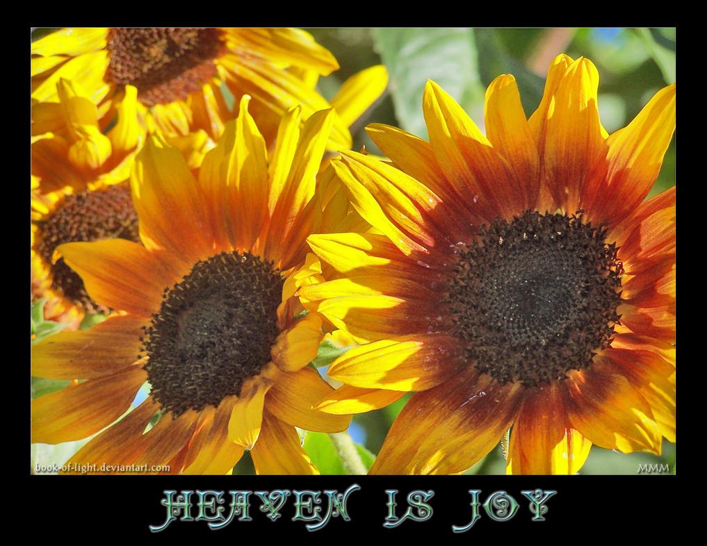 Heaven Is Joy by ShyloLove