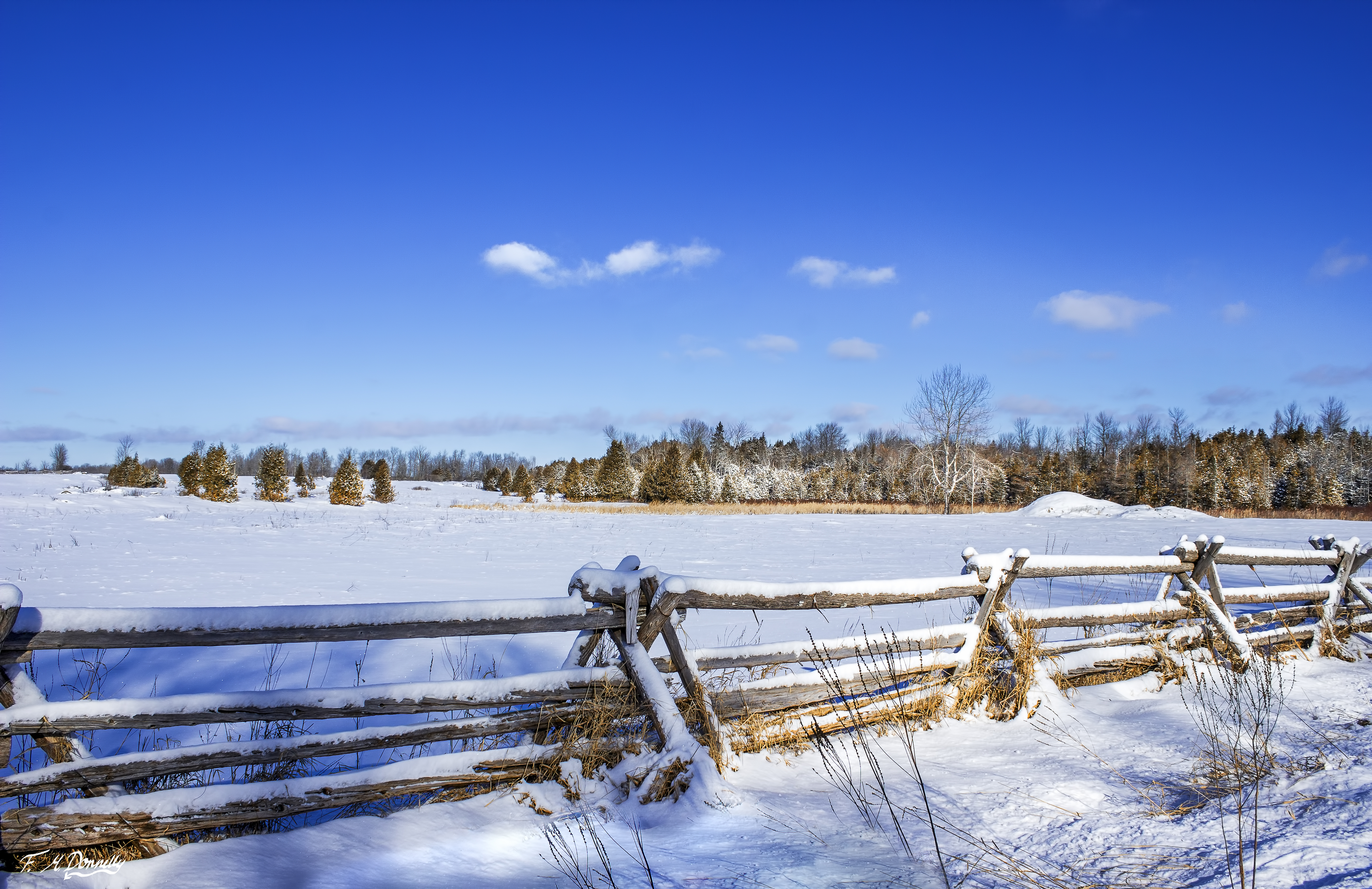 Winter in Lanark County, Ontario 1 by Nini1965