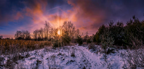 A Beautiful Sunrise over Snow Covered Scenery