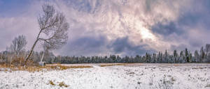 Snow in the fields 6