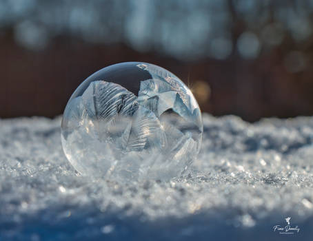 A Beautiful Frozen Soap Bubble