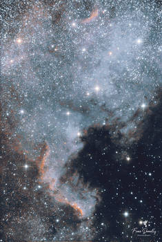 The North America Nebula, Constellation of Cygnus
