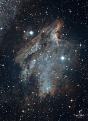 The Beauitiful Pelican Nebula
