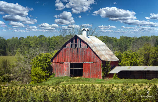 An Old Red Barn in Eastern Ontario