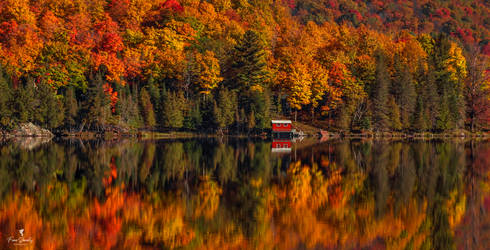 Beautiful Autumn Reflections in a Lake, Ontario