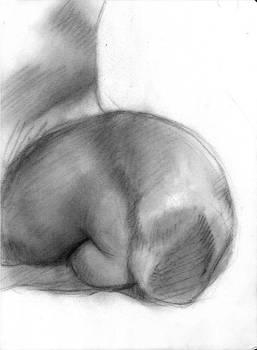 Anatomy study - body part