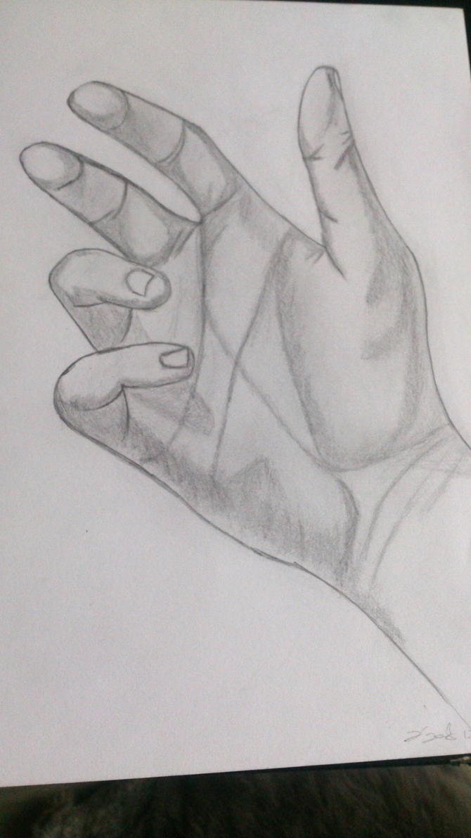 Hand Sketch by zizied