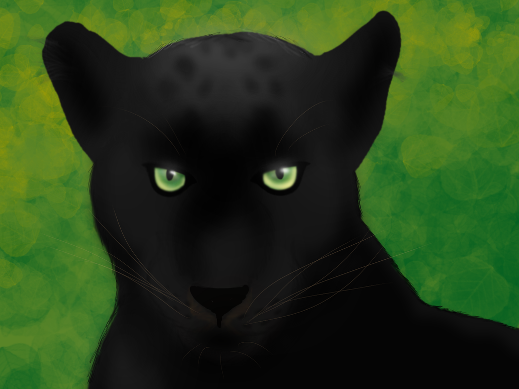 Not Amused by Panthera--Shadow