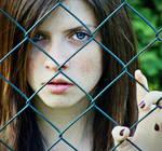 some fences