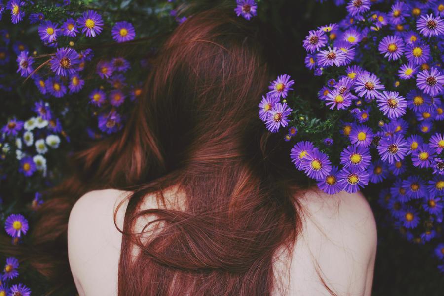 secret garden by She-hates-mondays