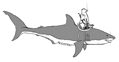 Nazi Polar Bear on a shark, smoking a cig...etc by ashitaka-sd