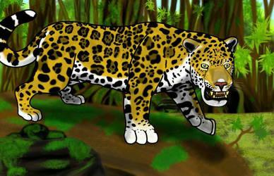 jaguar: biggest south america predator