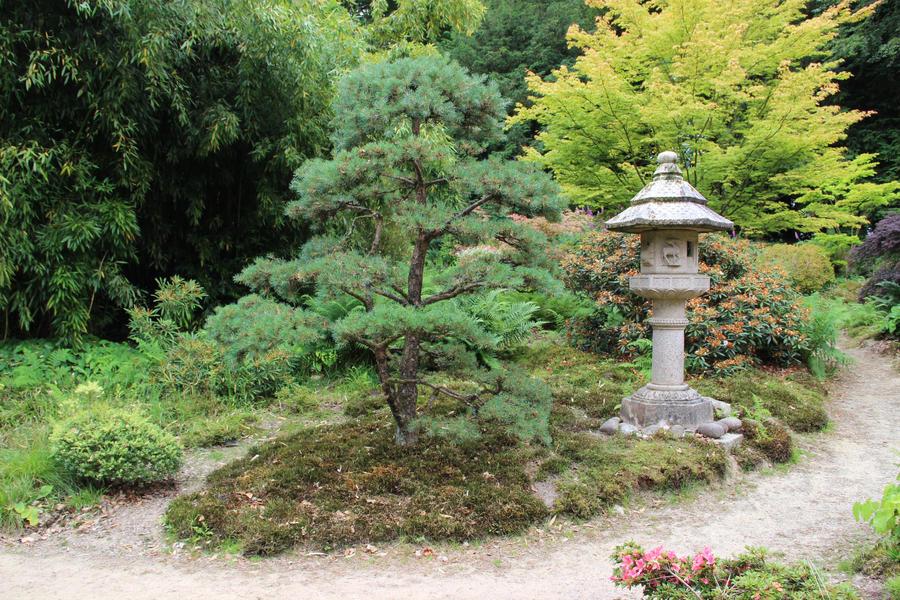 Petit jardin by Flore-stock