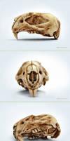 Skull rats