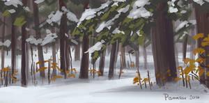 Chestnut Ridge 01
