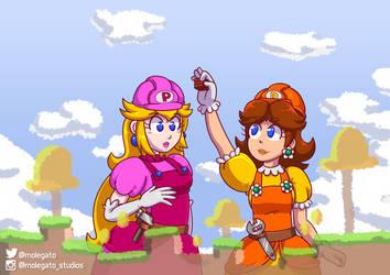 Mario Maker fanart: Princess maker? by molegato