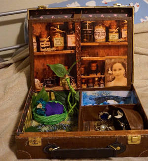Newt Scamander's Suitcase Playset