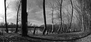 Black And White Pano 08 by N3croz
