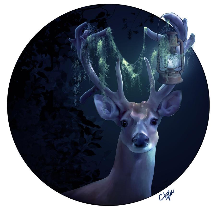 Lumineer by ctyler
