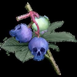 Skullberries