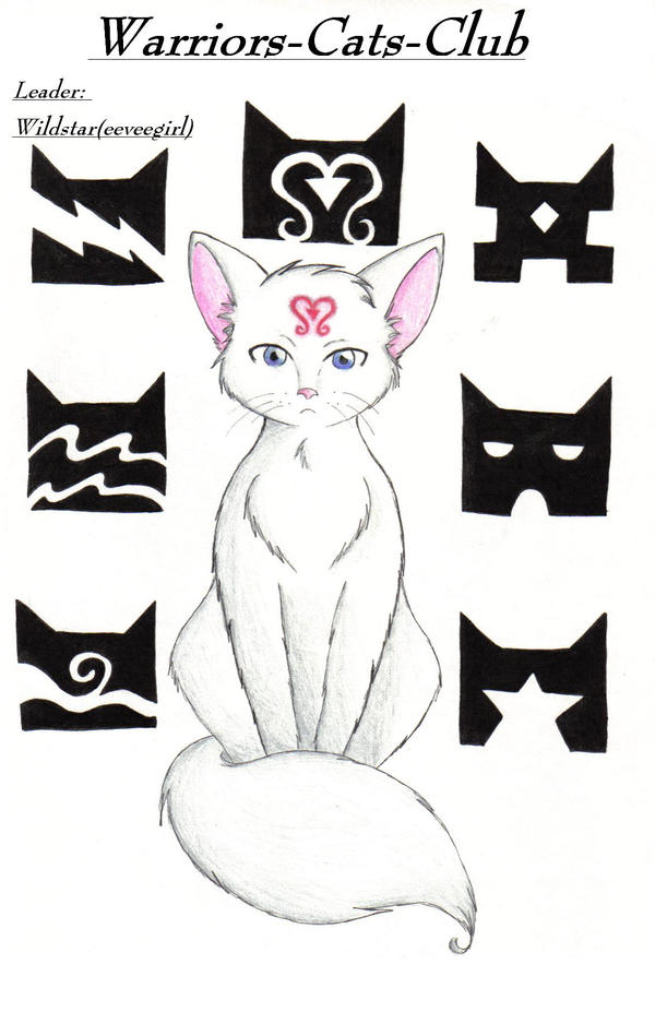 Digital art, share, and discuss theirwallpaper of cats Is an einem warrior