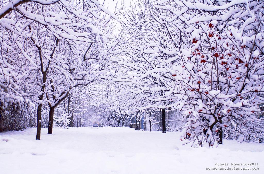 Winter_pj_2 by nonnchan