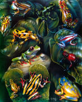 Frog Collage by DanMcManis