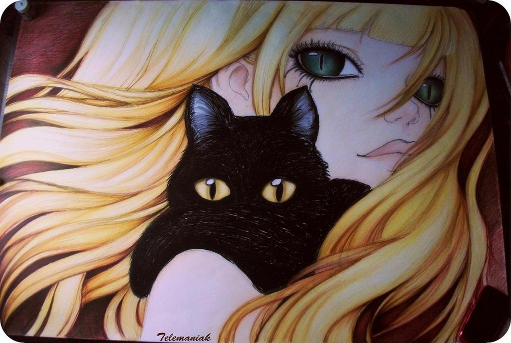 Cats by Telemaniakk