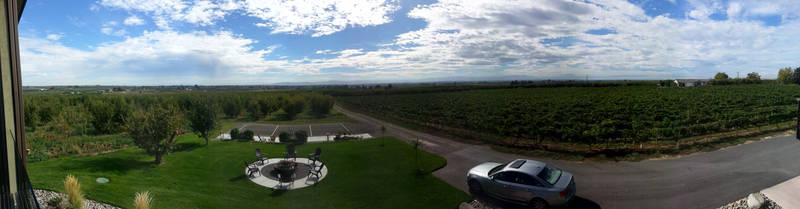 2 Mountain Winery (panorama)