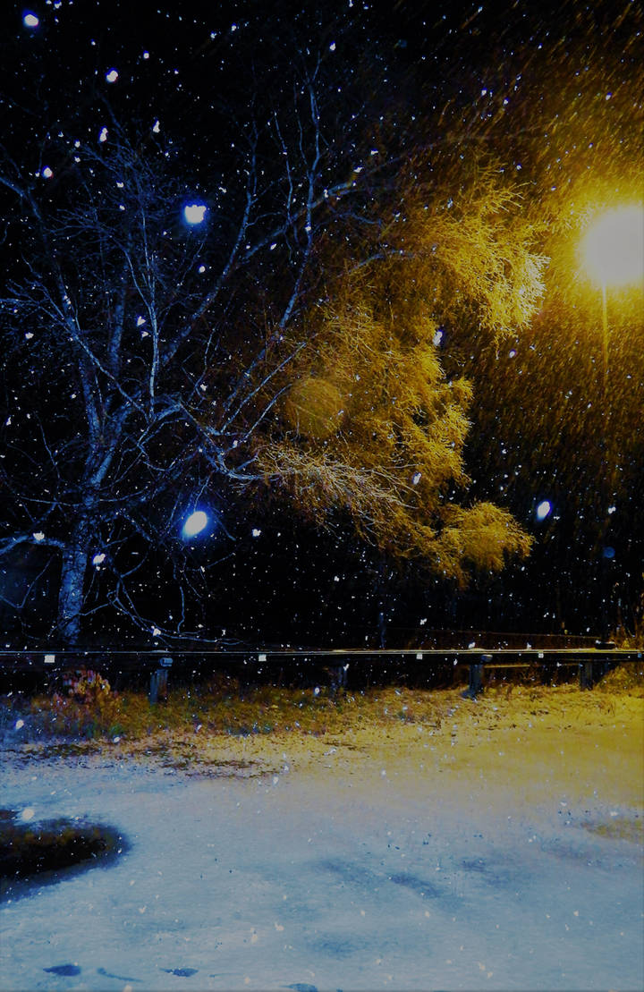 Wintery Night and Day