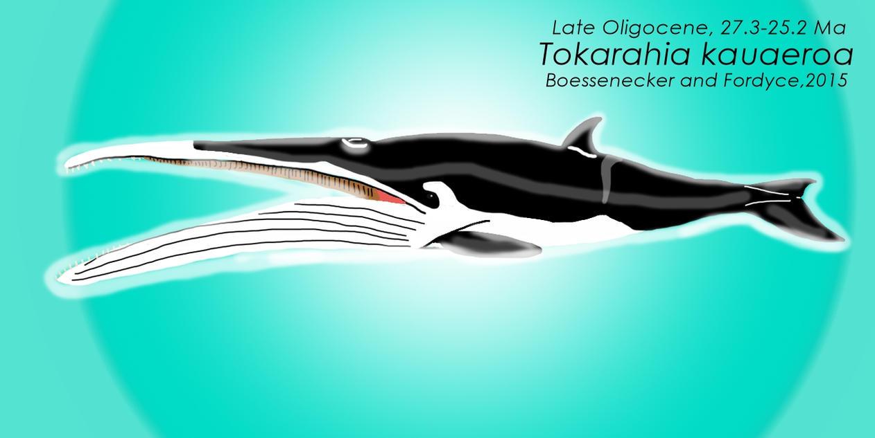 Tokarahia kauaeroa by DinoGuy777