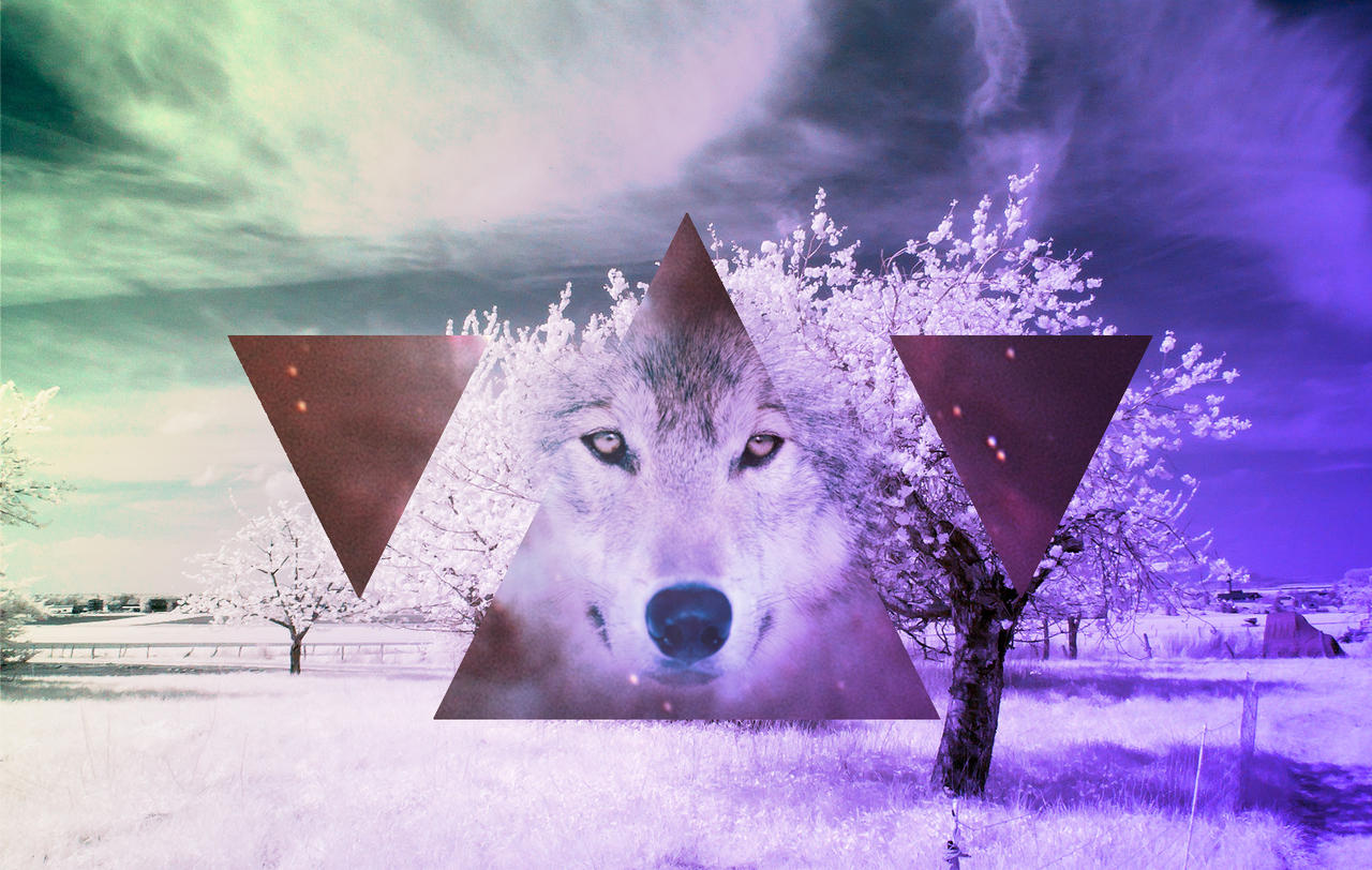 Galaxy Triangle Wolf Tumblr