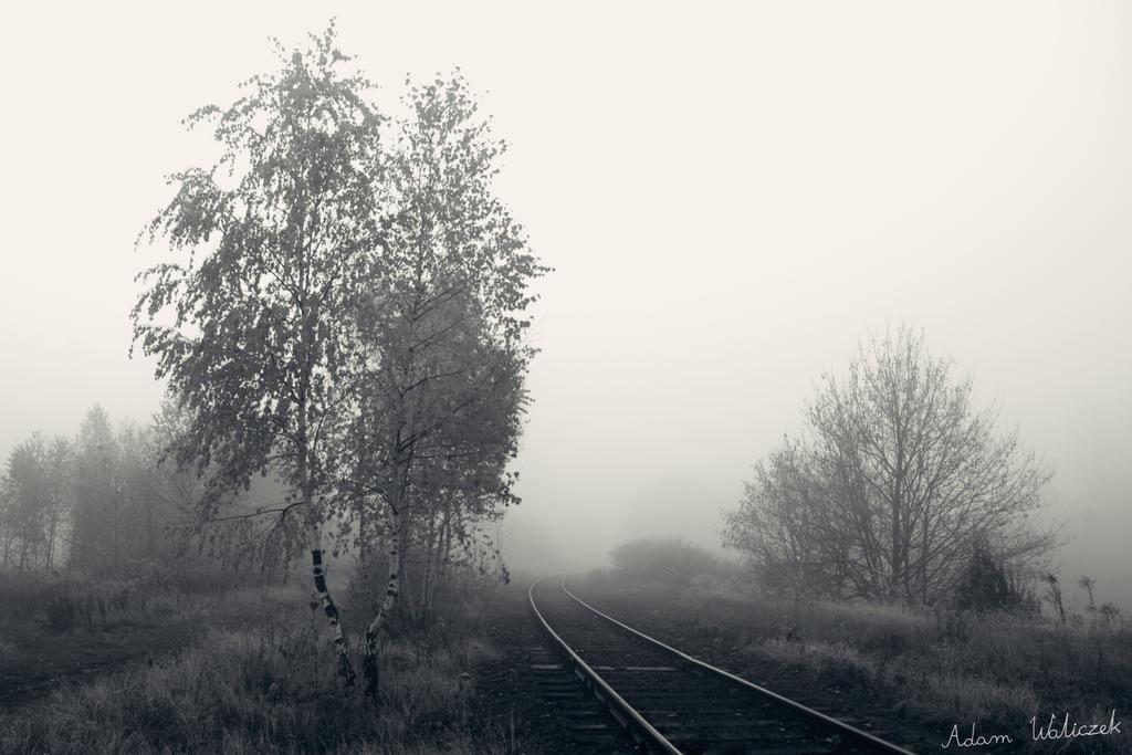 Foggy Rails by MisterMistrz