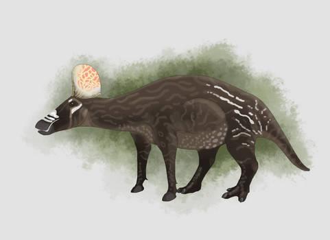 Franciscosaurus longignathus
