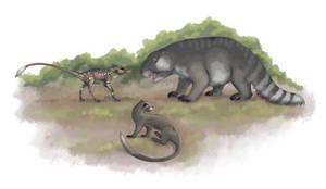 Buskerotherium, Pepedon and Notoglirodon