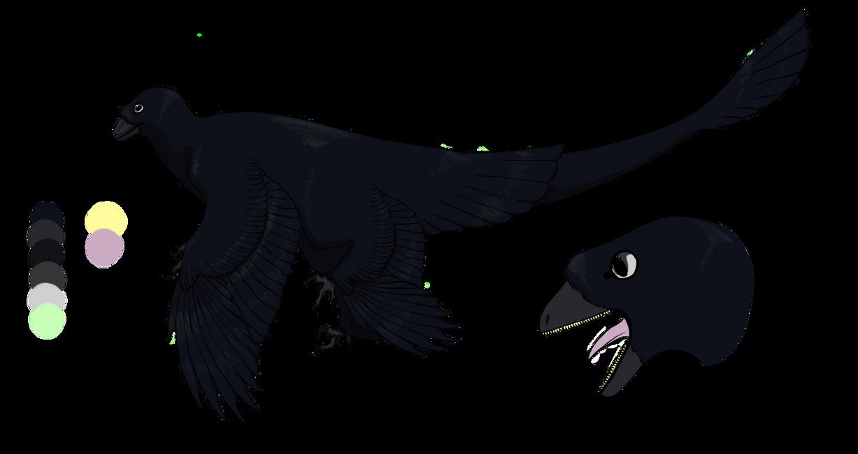 Microraptor by Corvusaurus