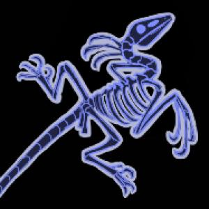 Corvusaurus's Profile Picture